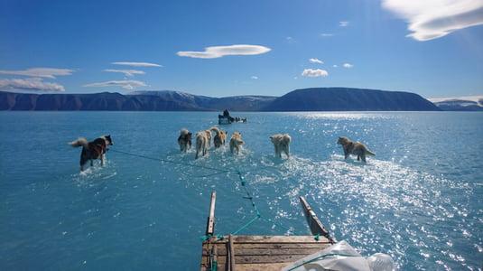 Despre relativizarea postmodernă a apocalipsei. Calota glaciară din Groenlanda se topește. Întors bronzat de la Marea Neagră, de la Neptun